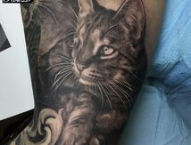 Cat tattoo portrait by Roxane Duquenne