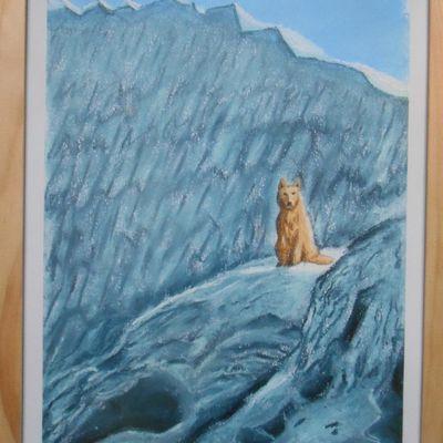 Le Loup du glacier (pastel sec)