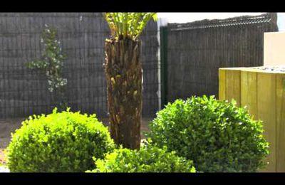 Aménagement de jardin sur Vannes Baden Morbihan - Arbor Mineral - Paysagiste - Créateur de votre...