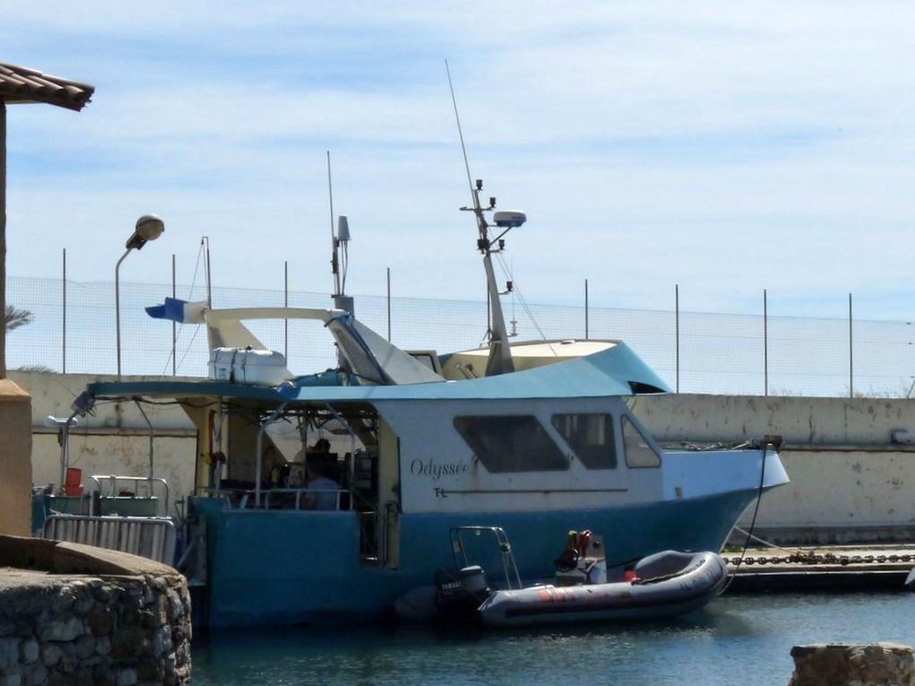 ODYSSEE dans le port de Port Pothuau