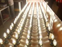 Inauguration d'une antenne locale d'une société russe spécialisée dans la fabrication d'ampoules