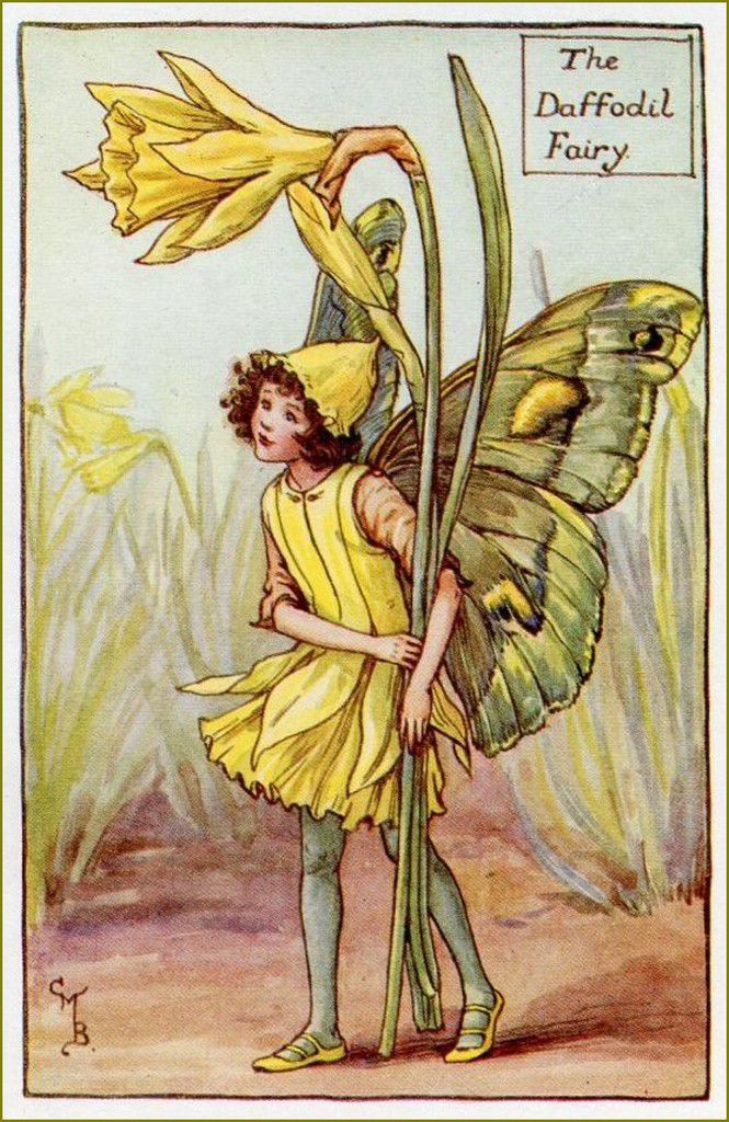 Cicely Mary Barker jonquilles
