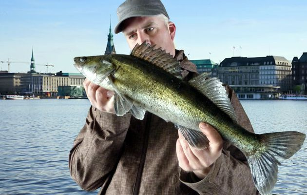 Alster-Zander Session No.#28