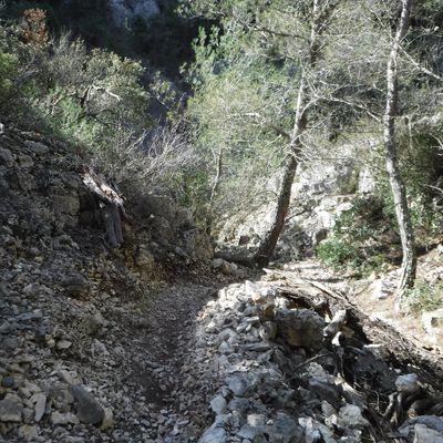 La Rando des Crêtes de Ceyreste le 14 mars 2021