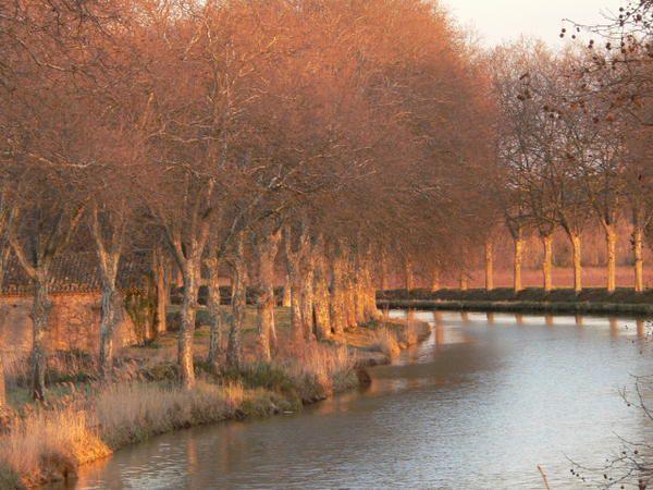 """Promenade en images le long du canal du Midi, du port de l'Embouchure à Toulouse à Sète et l'étang de Thau.<br /><span style=""""font-style: italic;"""">(l'album devrait s'enrichir au fil des saisons et au gré des occasions)</span>"""