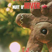 Conte d'une nuit d'hiver de Ludovic Metzker