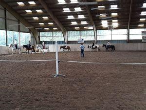 Première séance d'équitation à Tollevast
