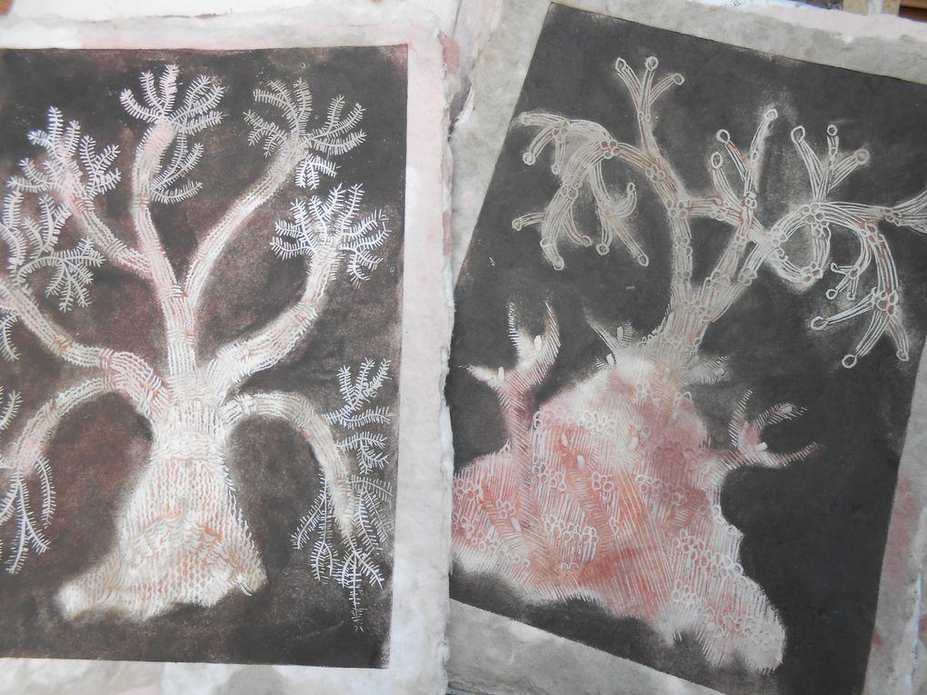 herbier avec monotypes de plantes et linogravures, les papiers support de gravure arbres sont colorés avec des pâtes teintes
