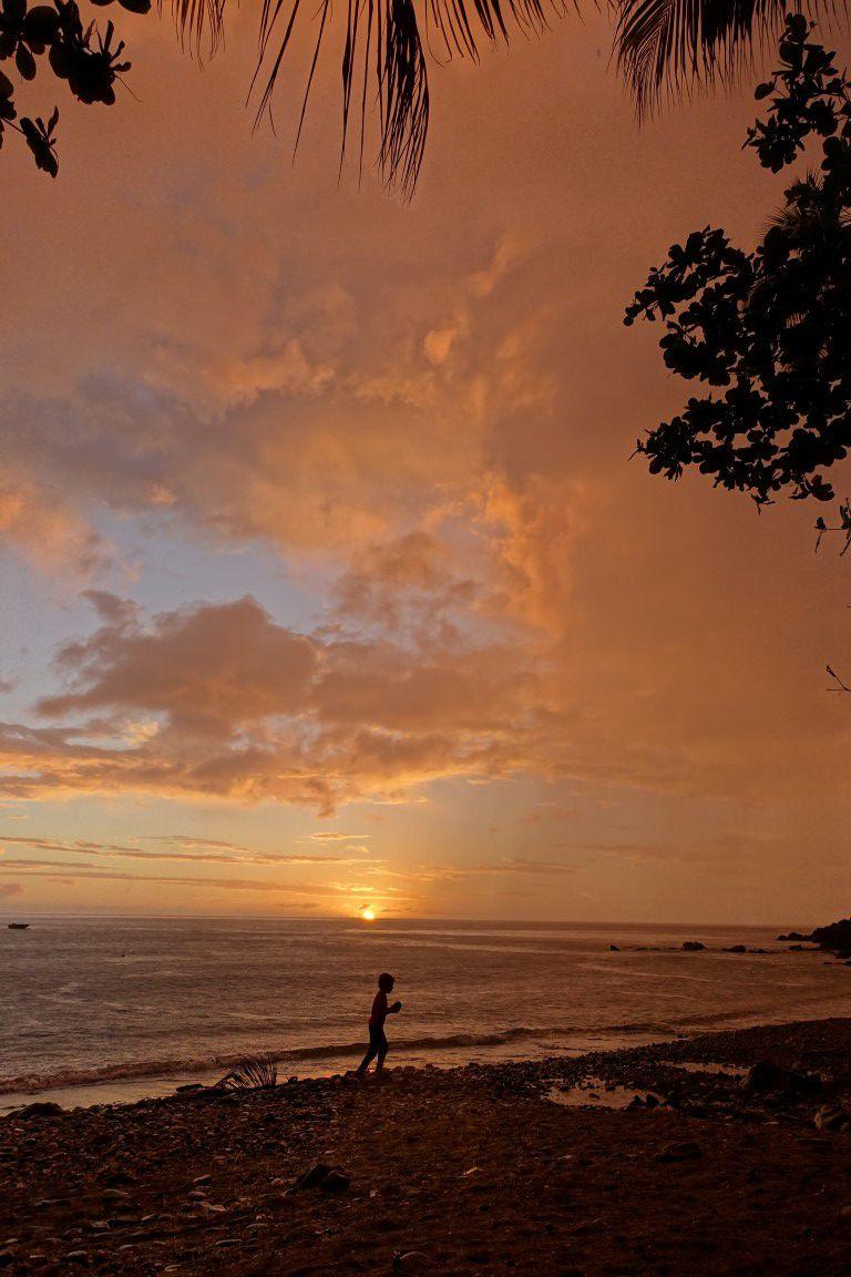 le littoral de Pointe Noire, ses crépuscules sous cocotiers, ses chenilles et iguanes