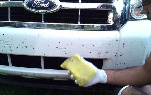 How to remove dried tar from your car