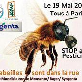 Marche mondiale contre Monsanto Bayer