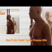 Don't Go Todd Terry Freeze Mix
