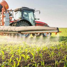 Voici ce que l'électricité peut nous apprendre sur la sécurité des pesticides