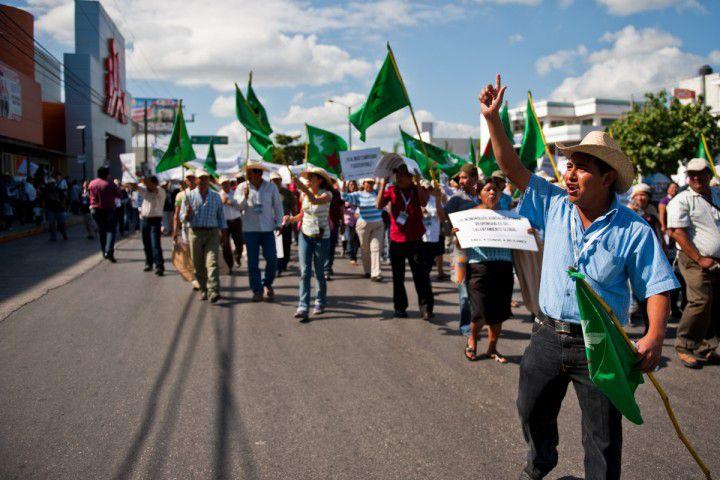 227 activistes de l'environnement assassinés en 2020, un record