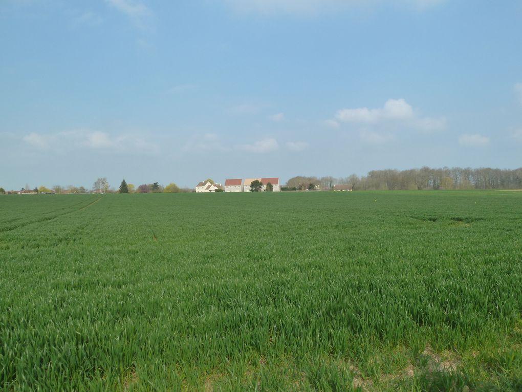 Randonnée d'Orgerus-Behoust à Nézel-Aulnay - 22 km.