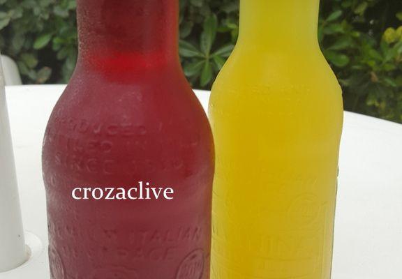 GALVANINA, la boisson gazeuse bio attitude.....