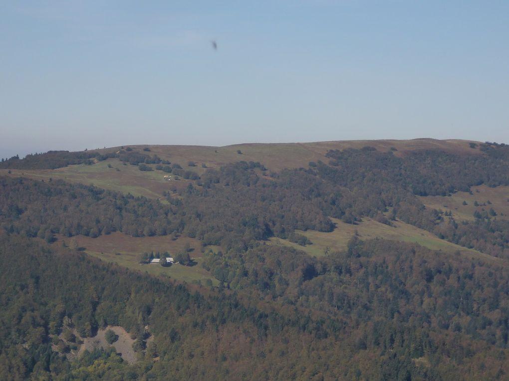 Les chaumes du Nonselkopf sont exceptionnelles. Au loin vers le Schnepfenried, nous observons de nombreux parapentistes.