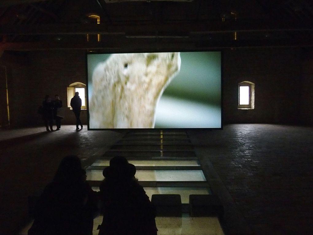 Jennifer Allora & Guillermo Calzadilla. Split the lark (2016)  &  Raptor's Rapture (2012)  &  Apotomē (2013)  &  3 (2013). Abbaye et fondation Royaumont © photographies Le Curieux des arts Gilles Kraemer, visite presse, 2 avril 2016