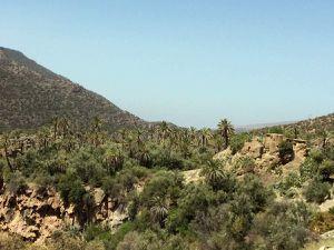 Trois coups de coeur dans le sud marocain