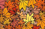 Feuilles d'automne à colorier (1)