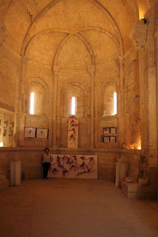 les racines de vigne Exposition à Loupian à la chapelle St Hippolyte du8 au 25 juillet 2021