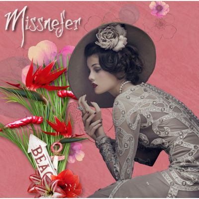 Missneferpassions Le blog
