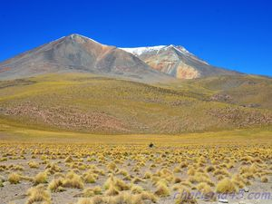Nord-Lipez en camping-car (Bolivie en camping-car)