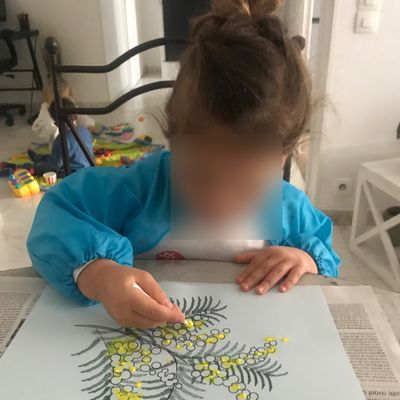 Dessin facile : une branche de mimosa