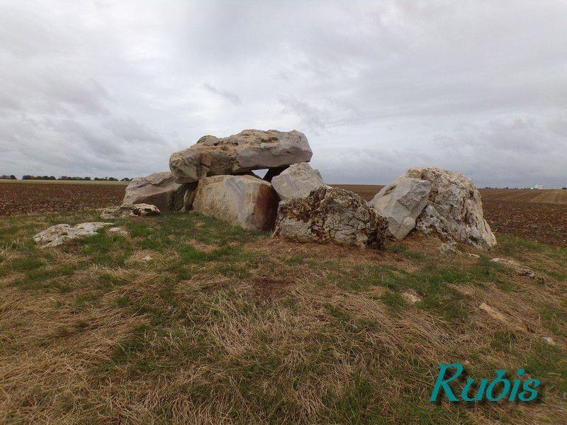 Dolmen de la Pierre Clouée ou de Koraïre, Andonville (45)