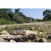 Doubs : ici coulait une rivière