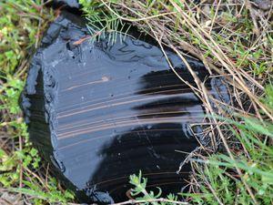 Jraber - échantillons d'obsidienne noire veinée d'obsidienne acajou -  photo © Bernard Duyck 2019 - un clic pour agrandir