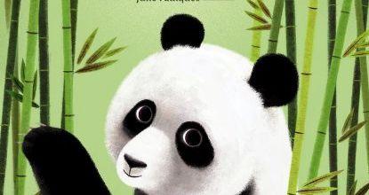 L'histoire vraie de Yen-Yen le panda géant.