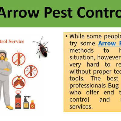 Contact Arrow Pest Control to remove bugs and pests from your home