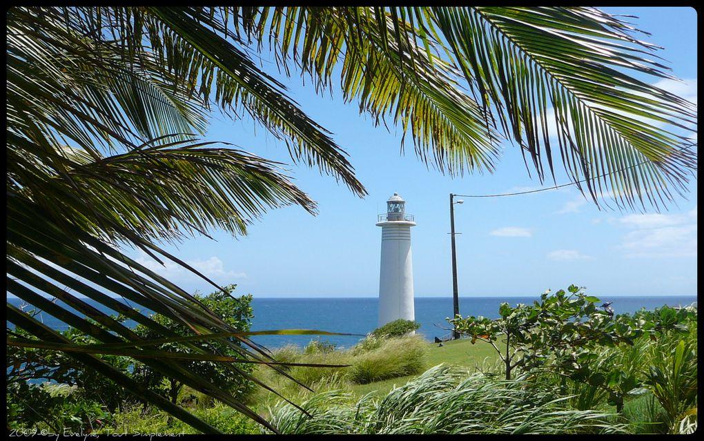 Mon premier voyage en Guadeloupe, lors de la naissance de mes petites filles