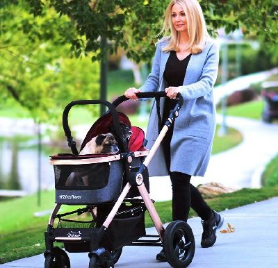 Buy Durable Pet Strollers from HPZ™ PET ROVER