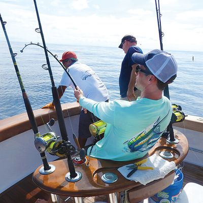 The Bahamas: the best fishing destination guide