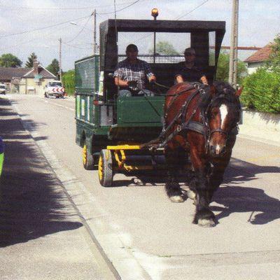 Collecte des déchets à cheval