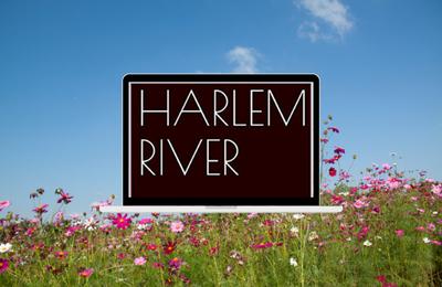 HARLEM RIVER Thriller - Rodrigue Ruiz Botella