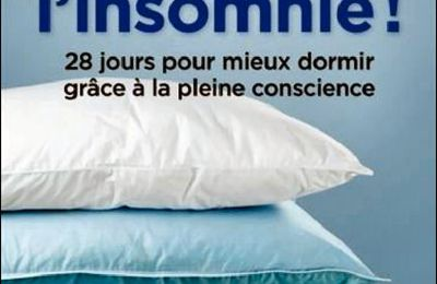 *FINI L'INSOMNIE!* 28 jours pour mieux dormir grâce à la pleine conscience* Catherine Polan Orzech, m.a. et William H. Moorcroft, ph* Éditions de Mortagne* par Lynda Massicotte*