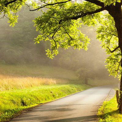 Atteindre votre objectif : le chemin que vous suivrez compte davantage que le but final !