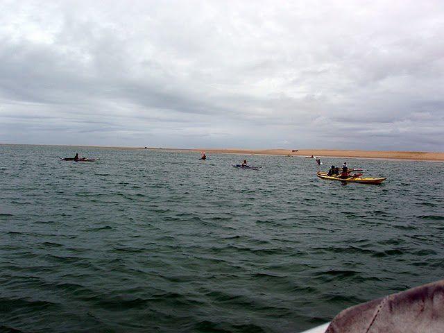 Pique nique au banc d'Arguin 14 kayaks  15 kayakistes et 3 Bigouden's