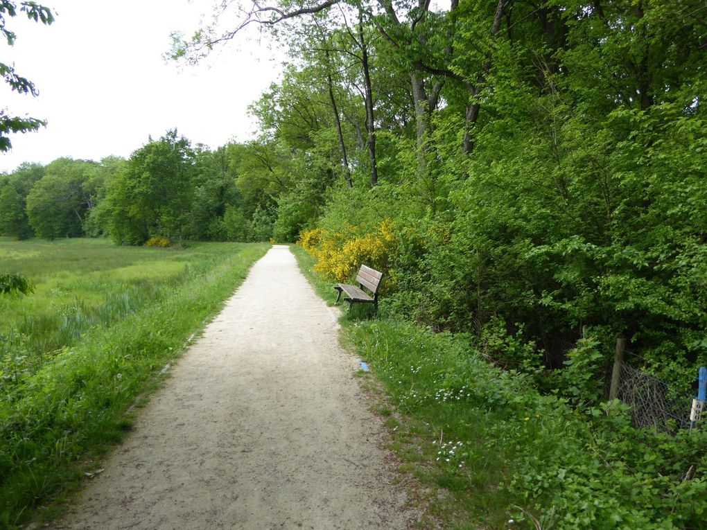 Randonnée en boucle de Gif-sur-Yvette 16 km. 2/2
