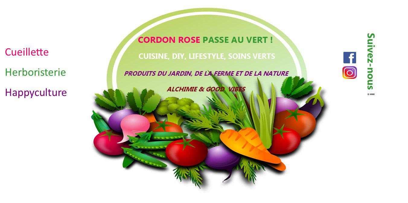 Salade d'automne du jardin (chou vert, carotte, pomme, oeuf)