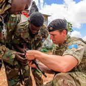 Un bouclier britannique pour l'Afrique - FOB - Forces Operations Blog