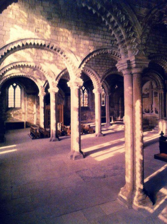 Le Livre de pierres Chartres, Rose Sud Notre Dame de Paris, La Chaire le Verbe, Tombeau de Guillaume le Taciturne, Cathédrale de Durham Angleterre.