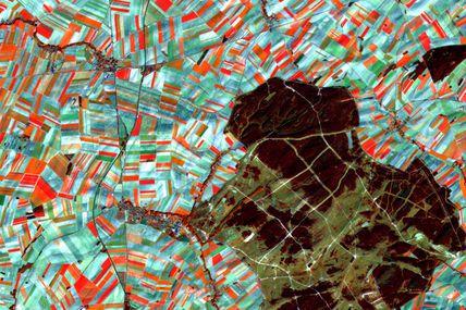 Agriculture en région Champagne : contraste avec les zones non cultivées