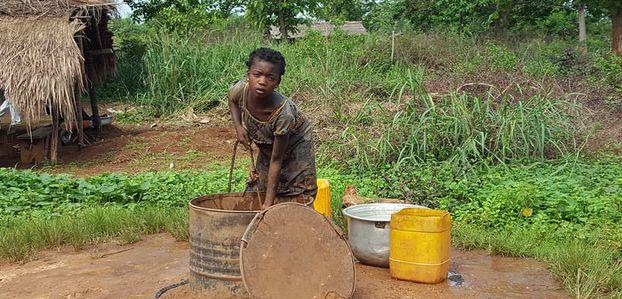 Opération graines pour Bangui
