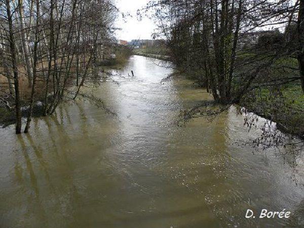 Rivière en crue.
