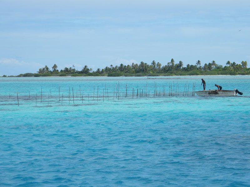 Photos et souvenirs des atolls visités dans l'archipel des Tuamotu.