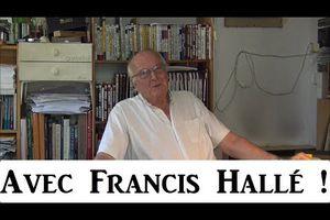 Discussion avec Francis Hallé !